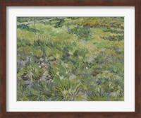 Long Grass With Butterflies Fine Art Print