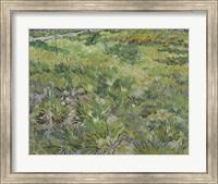 Long Grass With Butterflies Fine Art Print