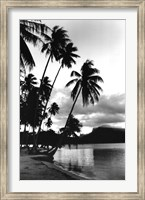 Dreaming of the South Seas, Society Islands, French Polynesia Fine Art Print