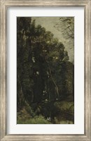 Forest And Brook Fine Art Print