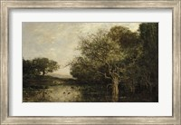The Pond With Herons Fine Art Print