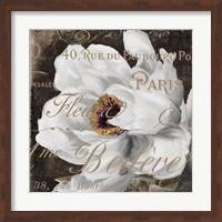 Fleurs Blanc III Fine Art Print