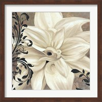 Winter White II Fine Art Print
