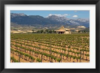 Small church next to the Wine Culture Museum, Briones village, La Rioja, Spain Fine Art Print