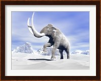 Large Mammoth Walking Slowly on the Snowy Mountain Fine Art Print