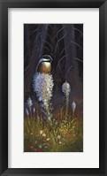 Beargrass Chickadee Fine Art Print