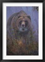 Mountain Ash Grizzly Fine Art Print
