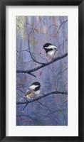 Pair of Chickadees Fine Art Print
