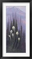 Beargrass Fine Art Print