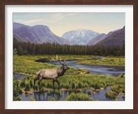 Meadows Of Grand Lake, Colorado Fine Art Print