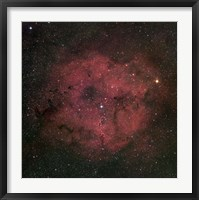 The large IC 1396 emission Nebula complex Fine Art Print