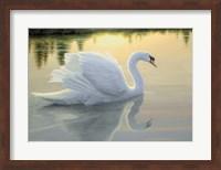 Quiet Waters Fine Art Print