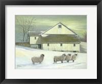 Sheep At Granough Fine Art Print