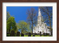 Saint Mary's Cathedral Basilica Fine Art Print
