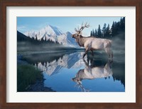 Reflections Of Glacier Fine Art Print