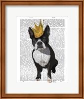 Boston Terrier And Crown Fine Art Print