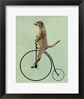Meerkat on Black Penny Farthing Fine Art Print