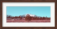 Mammoth Mountain Fine Art Print