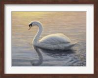 Quiet Waters 2 Fine Art Print