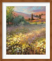 Field Of Dreams Fine Art Print