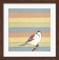 Little Brown Bird Fine Art Print