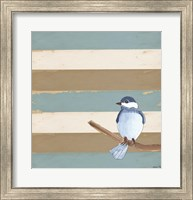 Dark Bluebird Fine Art Print