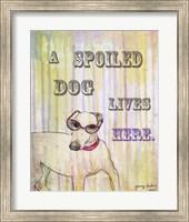 Spoiled Dog Fine Art Print