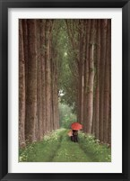 Two Umbrellas Fine Art Print
