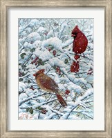 Winter Cardinal Painting Fine Art Print