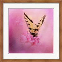 Butterfly On The Azaleas Fine Art Print