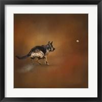 Gimme That Ball German Shepherd Fine Art Print