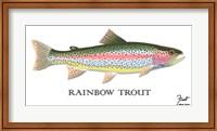 Rainbow Trout Fine Art Print