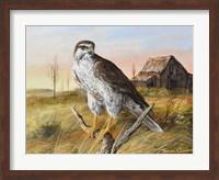 Prairie Guardion Fine Art Print