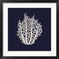 Contemporary Coastal Coral Fine Art Print