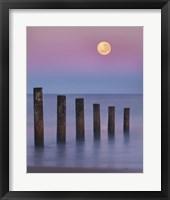 Moana Moon Fine Art Print