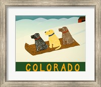 Colorado Sled Dogs Fine Art Print