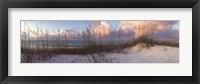Seaside Symphony Fine Art Print