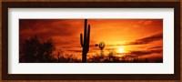 Sonoran Desert Sunset, Arizona Fine Art Print