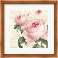 Roses in Paris VI Fine Art Print