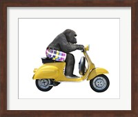 Monkeys Riding Bikes #4 Fine Art Print