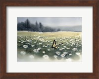 Daisy Field Fine Art Print
