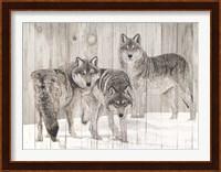 Three Grey Wolves on Wood Fine Art Print