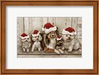 Dogs Christmas Fine Art Print