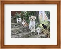 Furry Family Fine Art Print