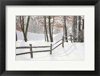 Winter Fence & Shadow, Farmington Hills, Michigan 09 Fine Art Print
