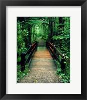 Wooden Bridge, Sundell, Michigan 90 Fine Art Print