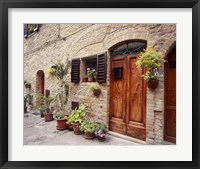 Flowers On The Wall, Tuscany, Italy 06 Fine Art Print