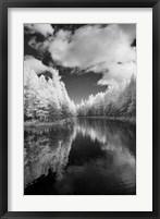 Mirror Of Heaven, Palms Book State Park, Michigan 12 Fine Art Print