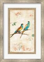 Hooded Parrot Fine Art Print