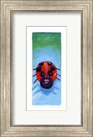 Bugs IV Fine Art Print